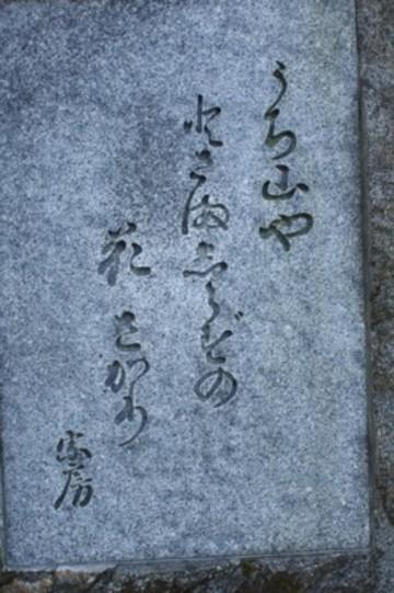 2009_2_217