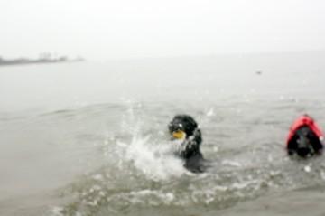 2009_4_47