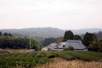 2009_11_105