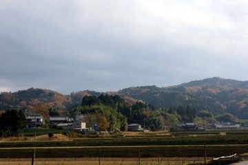 2009_11_274