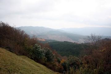 2009_11_2810