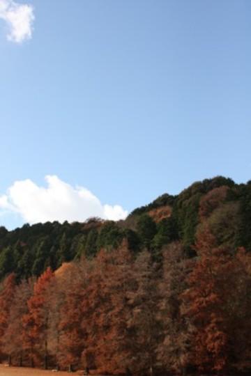 2009_12_144