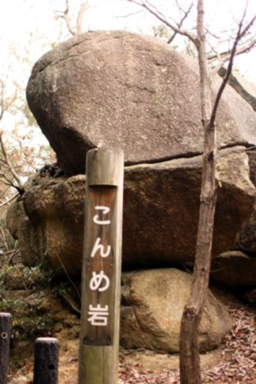 2010_01_035