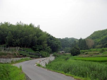 2010_07_311
