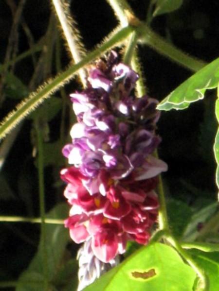 2010_09_0104