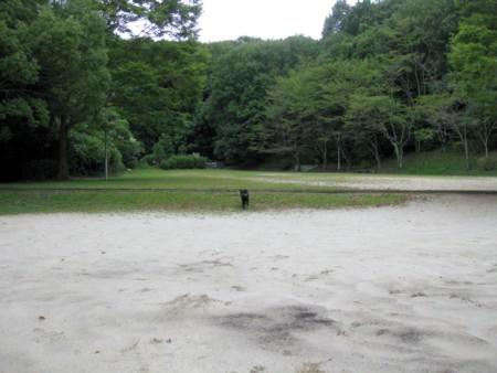 2010_09_247