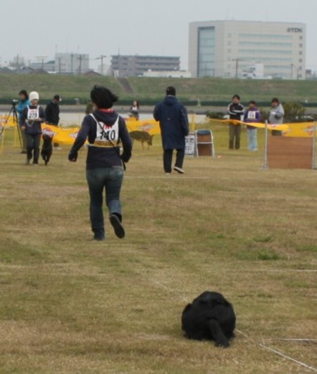 2010_11_0716