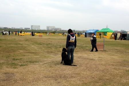 2010_11_078