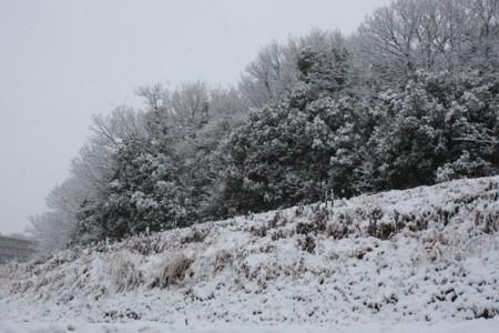 2011_02_112