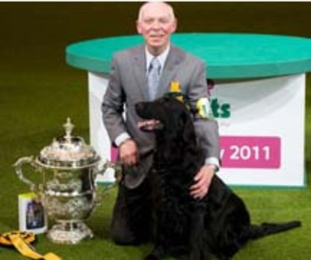 Crufts2011winner