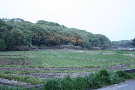 2011_04_305