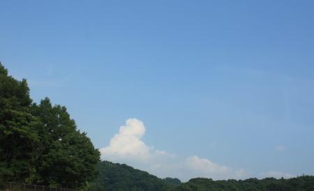 2011_08_121