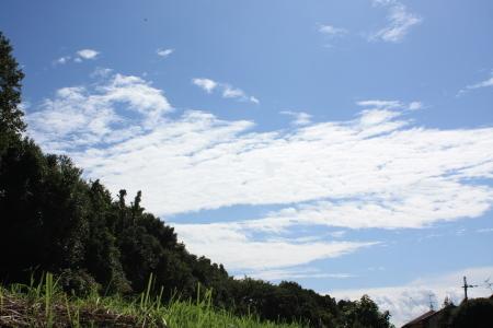 2011_08_263