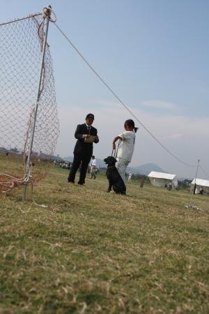 2011_10_10_4