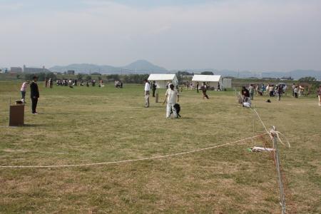 2011_10_10_6