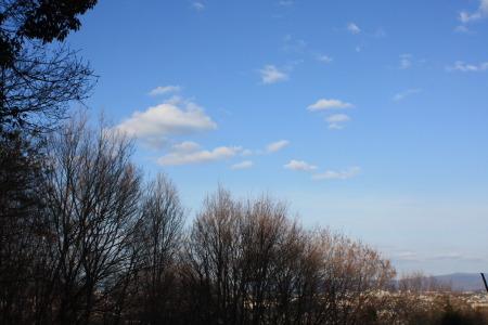 2012_01_1731_2