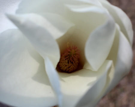 2012_04_058