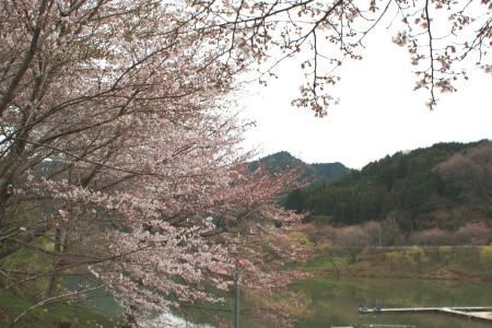 2012_04_133