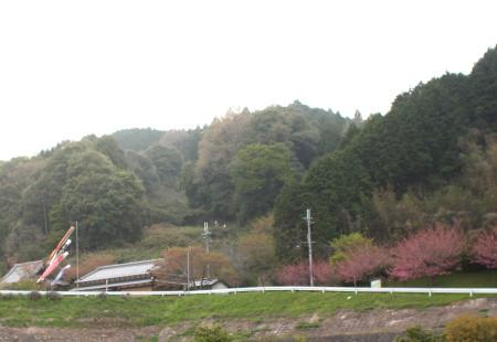 20112_04_252_2