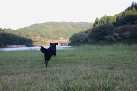 2012_09_284_2