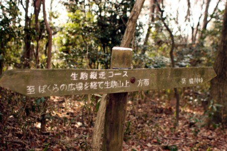 2010_01_304